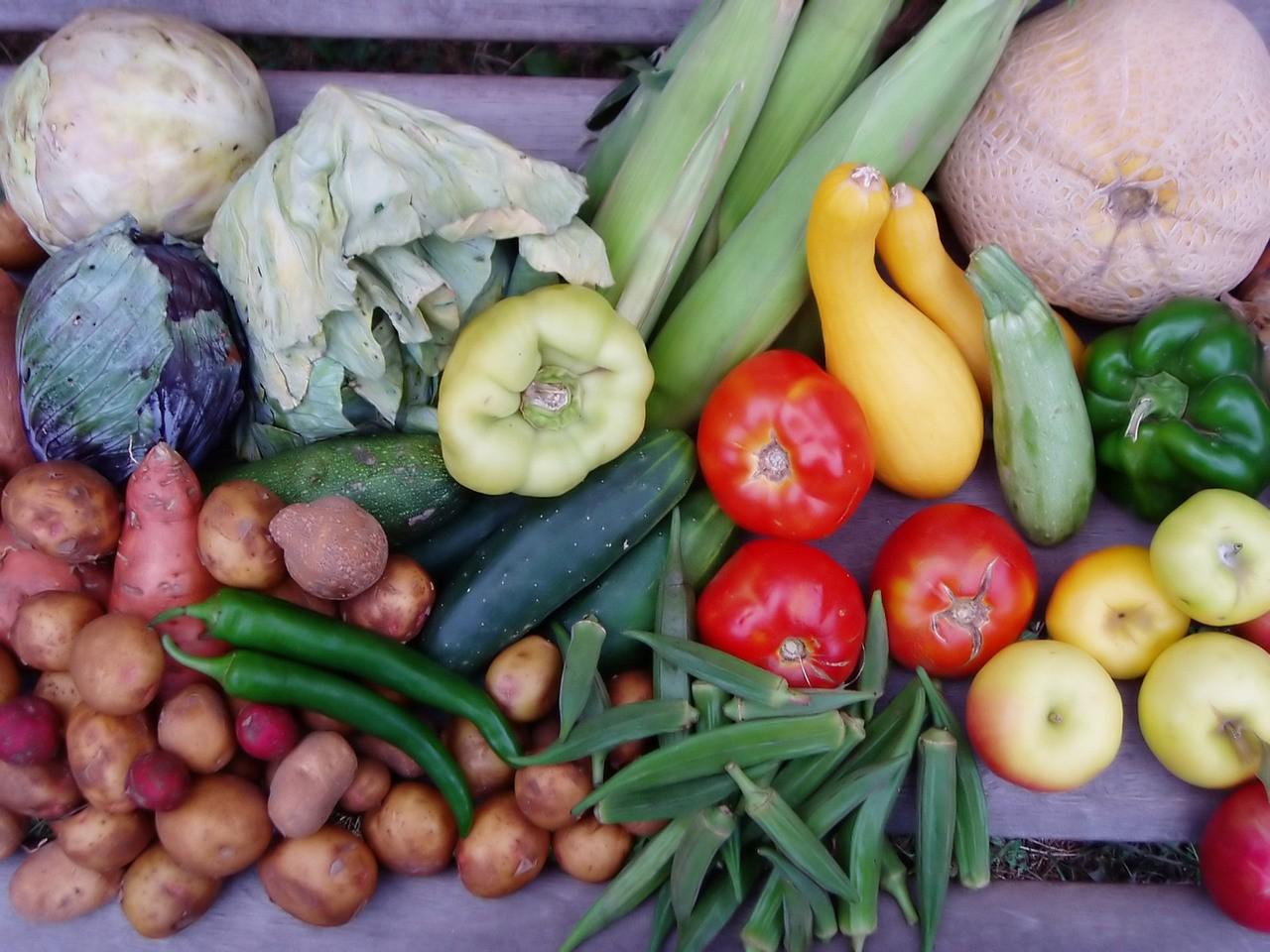 Jak odżywiać się w przypadku dolegliwości wątrobowych?